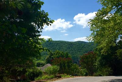 Residential Lots & Land For Sale: 5316 Fox Den Rd