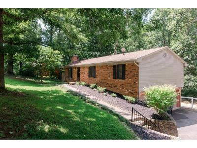 Blue Ridge Single Family Home For Sale: 185 Parkview Dr