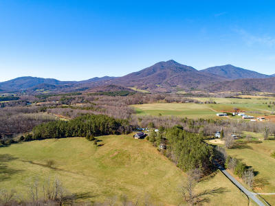 Bedford County Single Family Home For Sale: 4796 Patterson Mill Rd