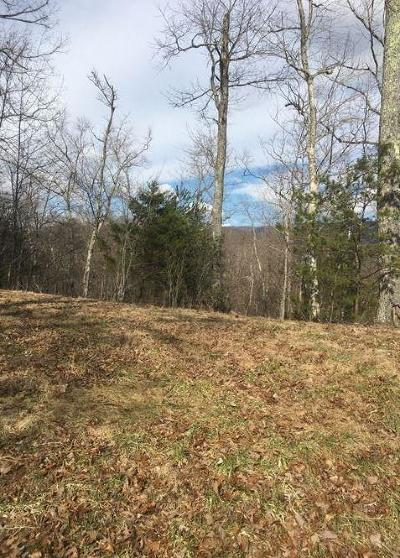 Blue Ridge Residential Lots & Land For Sale: Creasy Rd