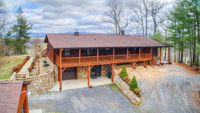 Botetourt County, Roanoke County Single Family Home For Sale: 1031 Poor Farm Rd