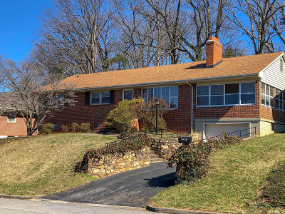 Roanoke City County Single Family Home For Sale: 2509 Broad St NW
