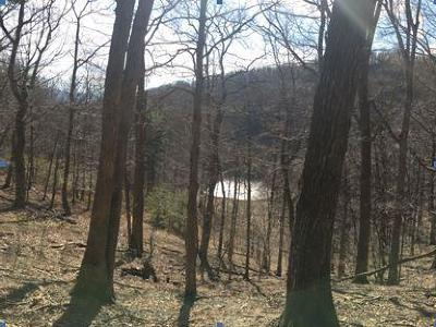 Botetourt County Residential Lots & Land For Sale: Short Hill Dr