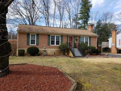 Roanoke County Single Family Home For Sale: 3591 Berryhill Dr