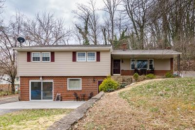 Roanoke County Single Family Home For Sale: 314 Dent Rd