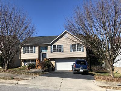 Roanoke City County Single Family Home For Sale: 2010 Kay St NW