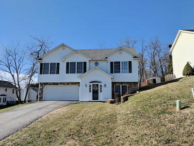 Vinton Single Family Home For Sale: 1619 Bush Farm Dr