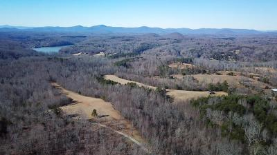 Bedford County, Franklin County, Pittsylvania County Single Family Home For Sale: 675 Shade Tree Ln