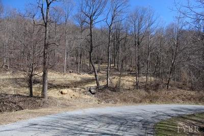Bedford County Residential Lots & Land For Sale: Taylor Mountain Rd