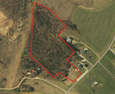 Pittsylvania County Residential Lots & Land For Sale: 6329 Blue Ridge Dr