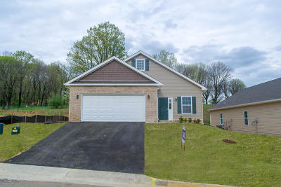 Bedford County Single Family Home For Sale: Lot 13 Woods End Ln