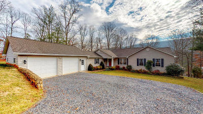 Bedford County Single Family Home For Sale: 300 Deerwood Dr