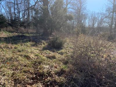 Bedford County Residential Lots & Land For Sale: Lot A Huntington Dr