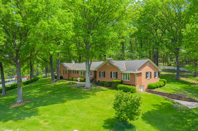 Botetourt County Single Family Home For Sale: 3683 Blacksburg Rd