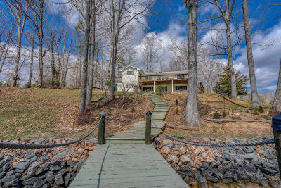 Bedford County Single Family Home For Sale: 104 Peninsula Dr