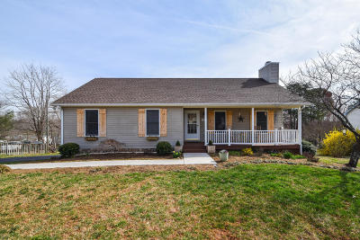 Roanoke Single Family Home For Sale: 3324 Hemingway Rd