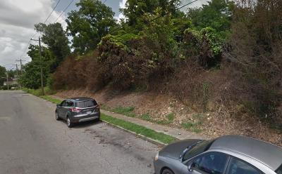 Roanoke Residential Lots & Land For Sale: Madison Ave NW