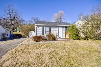 Roanoke City County Single Family Home For Sale: 520 Gladies St NW