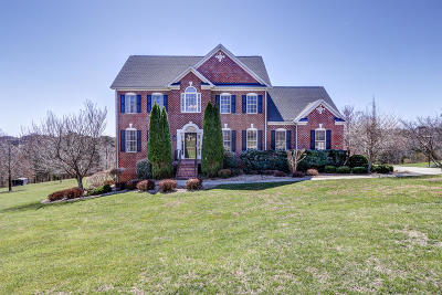 Bedford County Single Family Home For Sale: 1509 Ty Bluff Rd