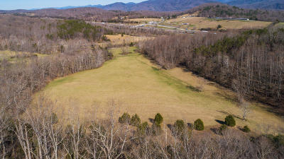 Buchanan Residential Lots & Land For Sale: Greyledge Rd