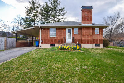 Roanoke Single Family Home For Sale: 1915 Lytham Dr SW