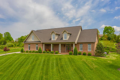 Botetourt County Single Family Home For Sale: 570 Hollymeade Ln
