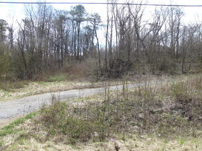 Blue Ridge Residential Lots & Land For Sale: Blue Ridge Blvd