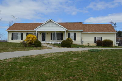 Bedford County Single Family Home For Sale: 1054 East Lois Ct