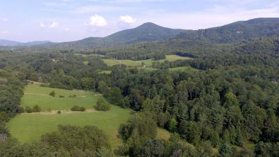 Residential Lots & Land For Sale: 7283 Old Mill Rd