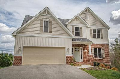 Roanoke Single Family Home For Sale: 6117 Castle View Ct