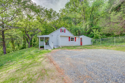 Roanoke Single Family Home For Sale: 6045 Bent Mountain Rd
