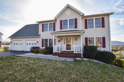 Roanoke County Single Family Home For Sale: 5757 Fieldview Dr