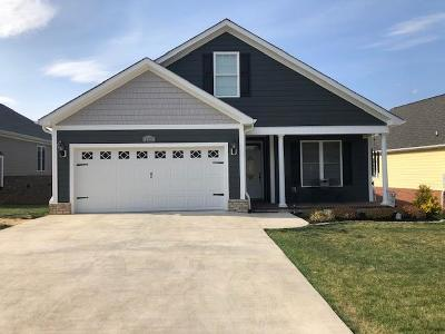 Roanoke County Single Family Home For Sale: 1117 Gaston Dr