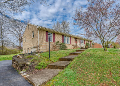 Roanoke City County Single Family Home For Sale: 5212 Britaney Rd