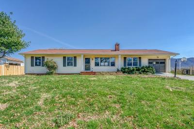 Botetourt County Single Family Home For Sale: 604 Knollwood Dr