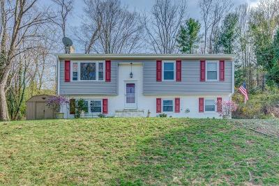 Roanoke County Single Family Home For Sale: 5242 Cave Spring Ln