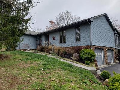Roanoke City County Single Family Home For Sale: 90 Hill Top Rd