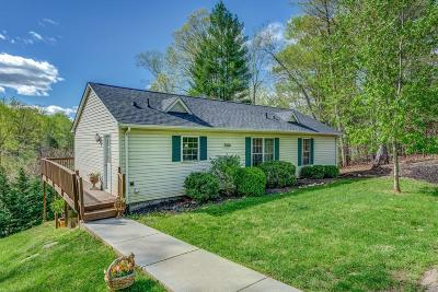 Bedford County Single Family Home For Sale: 169 Hales Point Dr