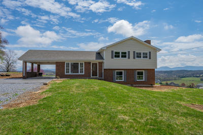 Botetourt County Single Family Home For Sale: 1155 Blacksburg Rd