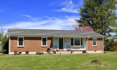Moneta VA Single Family Home For Sale: $139,900