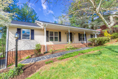 Roanoke Single Family Home For Sale: 2343 Circle Dr SW
