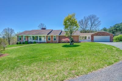 Franklin County Single Family Home For Sale: 1810 Old Franklin Tpke
