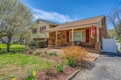 Botetourt County Single Family Home For Sale: 39 Windsor Ln