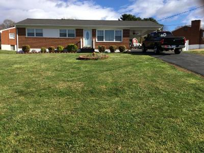 Roanoke County Single Family Home For Sale: 1502 South Pacific Dr