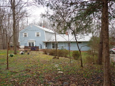Bedford County Single Family Home For Sale: 6767 Headens Bridge Rd