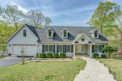 Moneta VA Single Family Home For Sale: $749,900