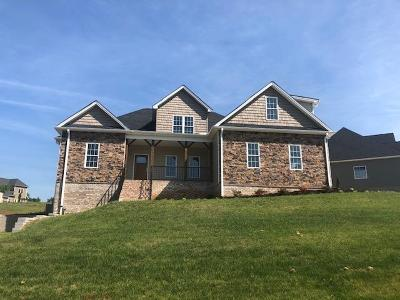 Forest VA Single Family Home For Sale: $359,500
