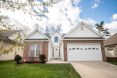 Roanoke Single Family Home For Sale: 2410 Willow Walk Dr