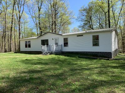Franklin County Single Family Home For Sale: 225 McKinley Dr