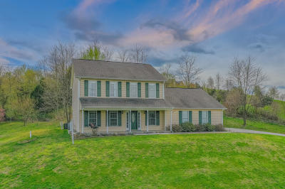 Botetourt County Single Family Home For Sale: 1899 Trinity Rd